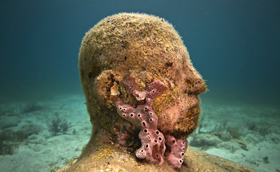 underwater sculpture with coral