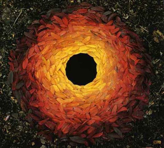 Multi-colored leaf sculpture by Andy Goldsworthy
