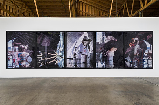 installation view of photographs by Willa Nasatir