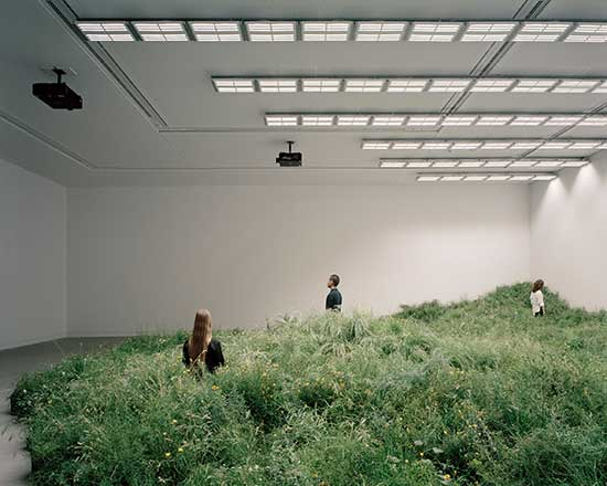 Biennale Architettura 2018 Australian Pavilion with indoor meadow